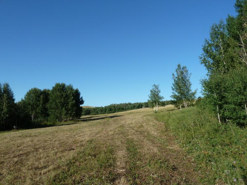 20120805. Сенокосная дорога на склоне горы рядом с селом Ленинское.