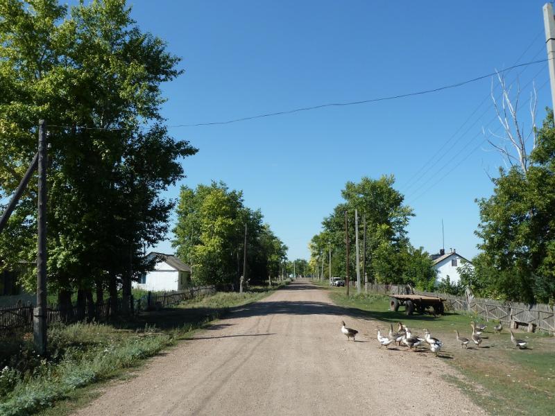 20120806. Улица села Ленинское.