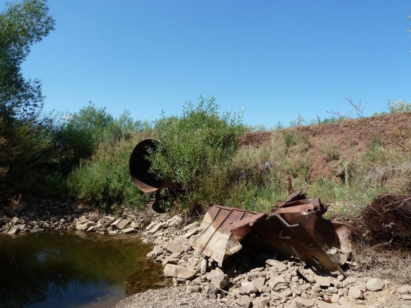 20120806. Вид на мост через реку Каратал у села Каратал.