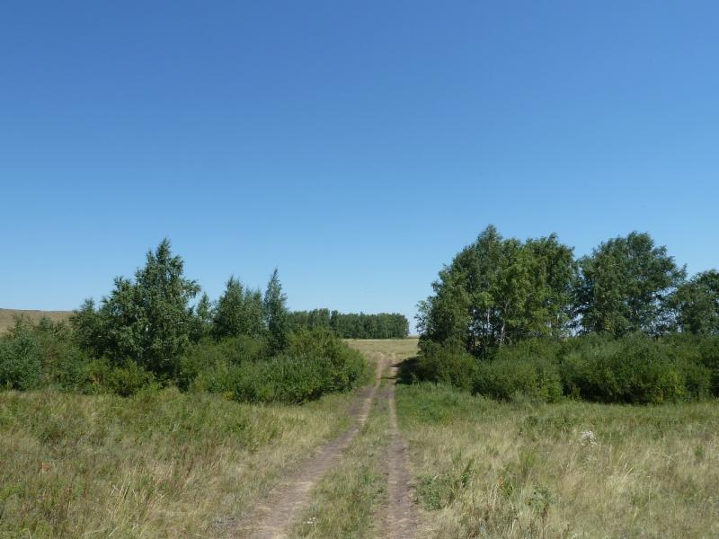 20120806. Дорога через один из пересохших притоков реки Каратал.