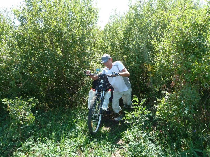20120806. Илья продирается сквозь заросли одного из пересохших притоков реки Каратал.