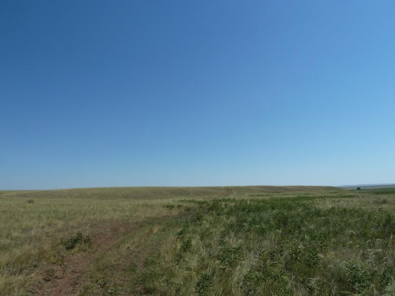 20120806. Дорога в село Ахметаул, левым берегом реки Картал.
