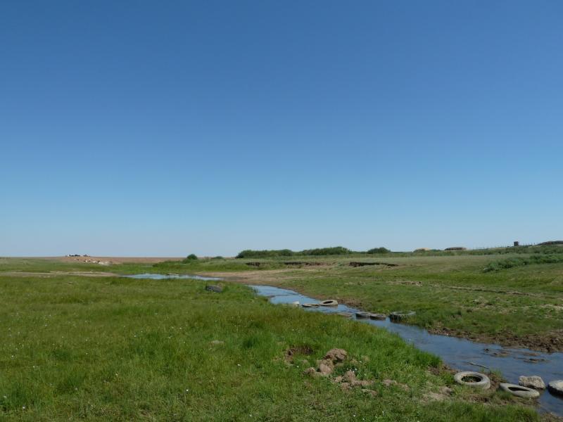 20120806. Речка Туреунбай, у села Ахметаул.