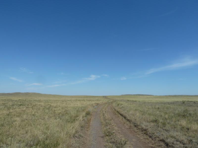 20120807. Дорога на восток от села Щидерты (Карагандинской области).