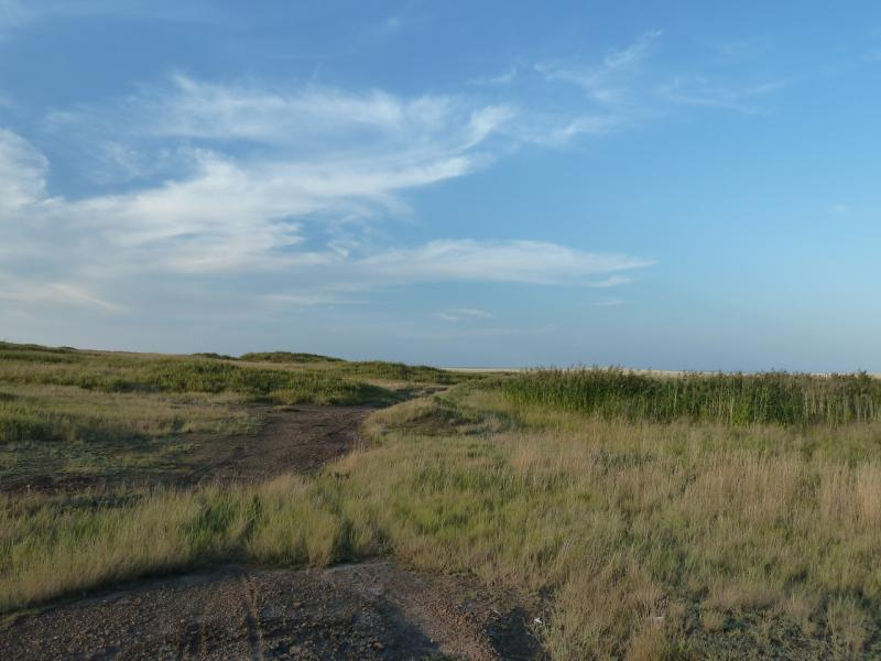 20120807. Дорога на юг от развалин села Жаман-Кандыадыр.