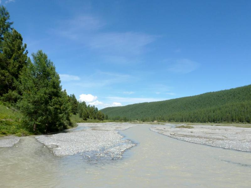 20180811. Галечный разлив речки Актуру, за три километра до верхнего лагеря.