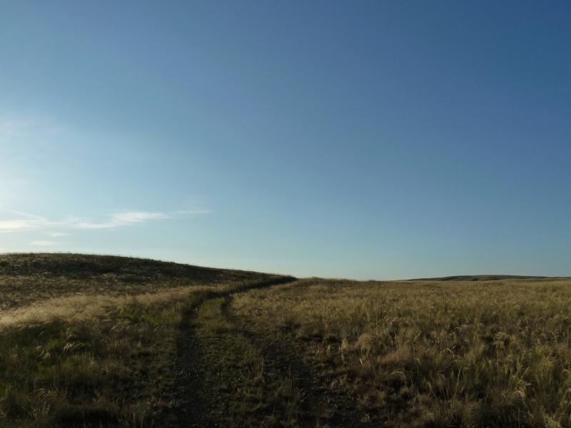 20120808. Дорога в сопки, по направлению на село Жастлек.