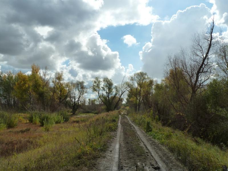 20120923. В пойме Иртыша, где-то рядом с посёлком Заря.