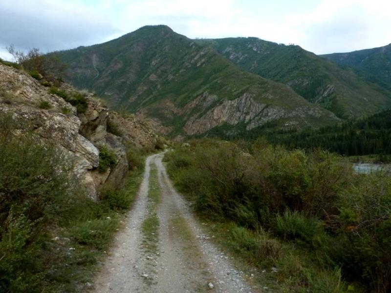 20180813. На автодороге Р-373 вдоль реки Катунь, за селом Инегень.