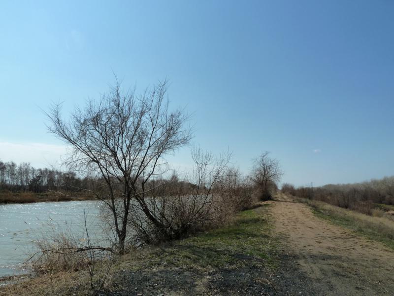 """20130421. Вдоль канала """"Иртыш - Караганда"""", неподалеку от Аксу."""