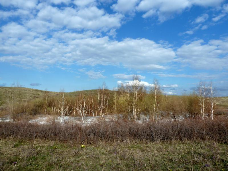 20130425. В холмах гор Жаксы-Сарытау.