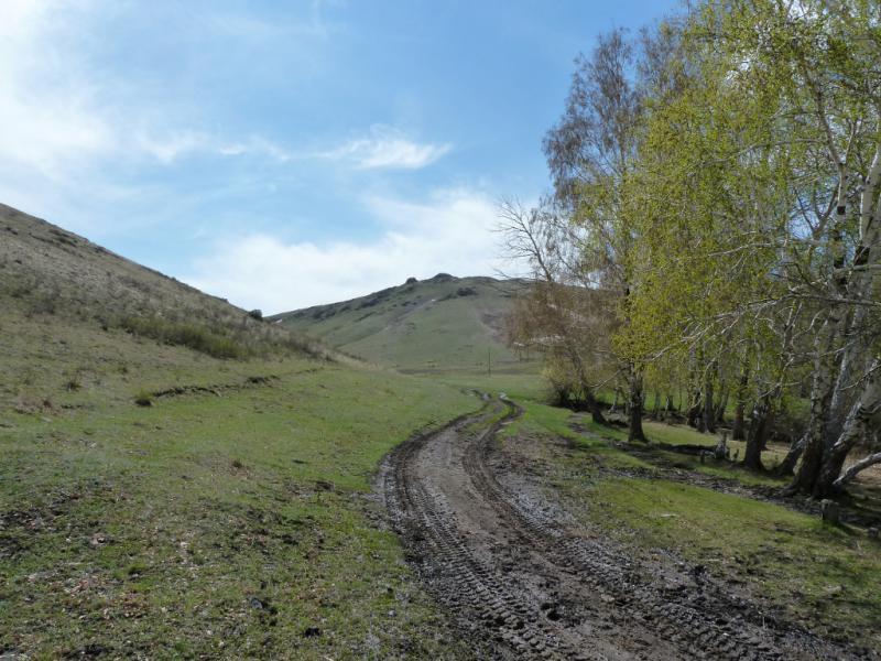 20130426. Дорога через горы Желтау, неподалеку от села Сарт.