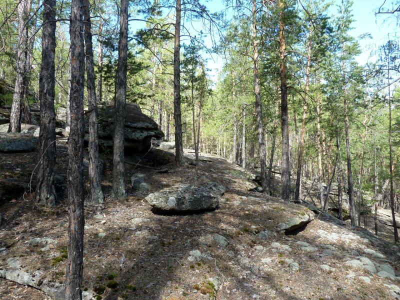 """20130501. На """"тропе"""" от кордона через горный хребет Каркаралинска."""