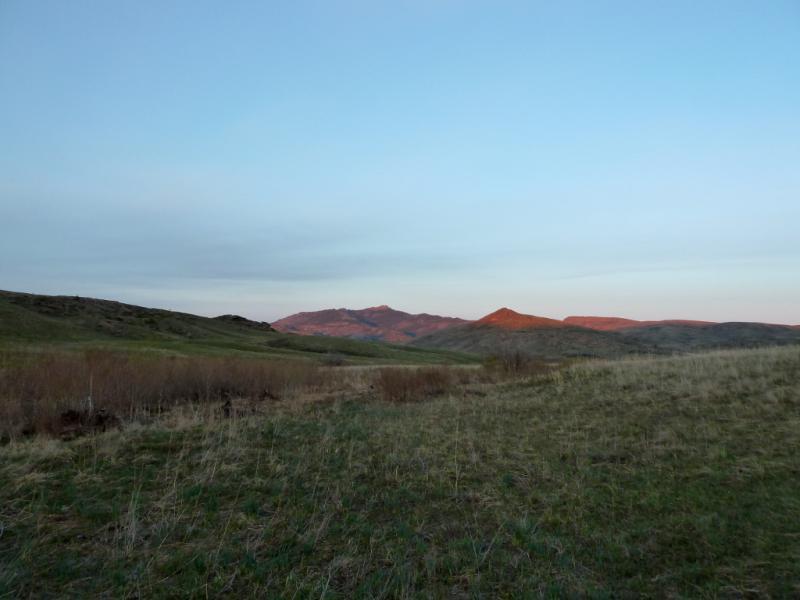 20130501. В долине ручья у горы Мырзашокы, в пятнадцати километрах от Каркаралинска.