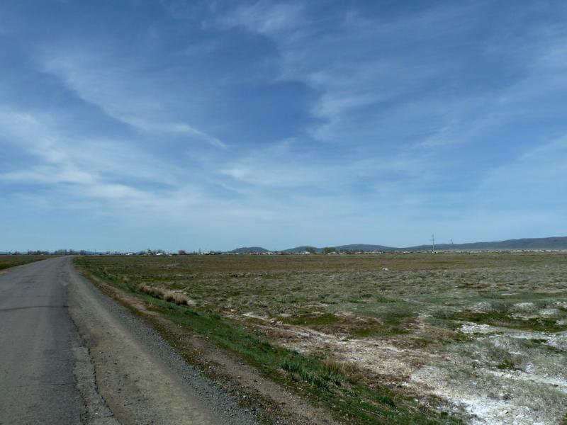20130502. Солончаковая низина между рекой Копа и Нуркентом.