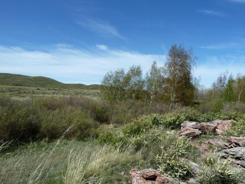 20130503. В горах Токсай и Карашокы.
