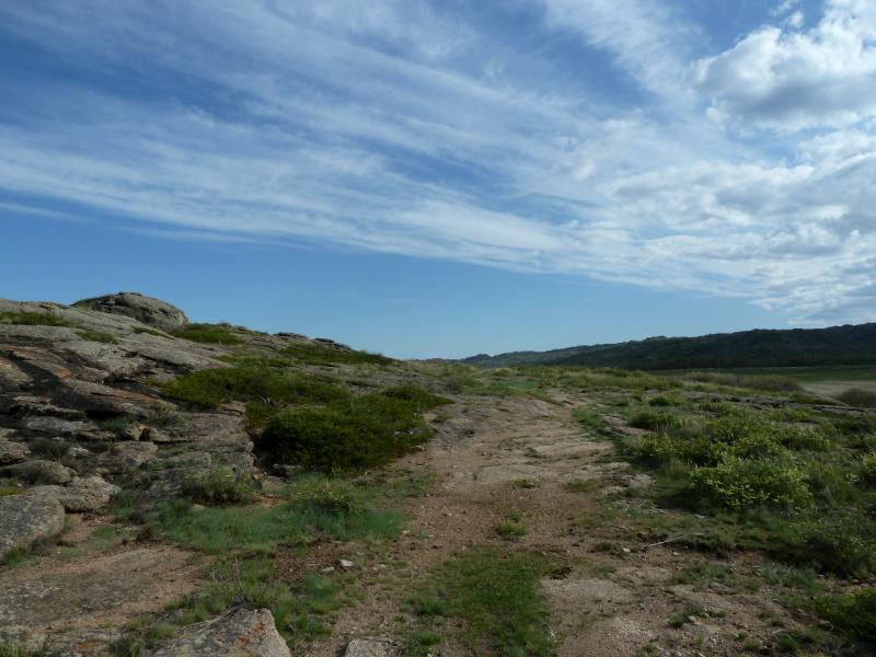 20130503. Дорога вдоль гор Жаман-Кызылрай.