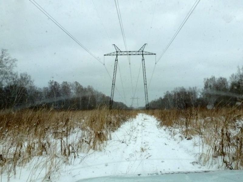 20181104. На одной из рабочих дорог, которые пролегают вдоль линий электропередачи и трубопроводов.