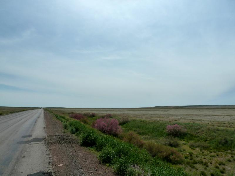 20130510. У дороги A-358, на Чу-Илийском хребте.