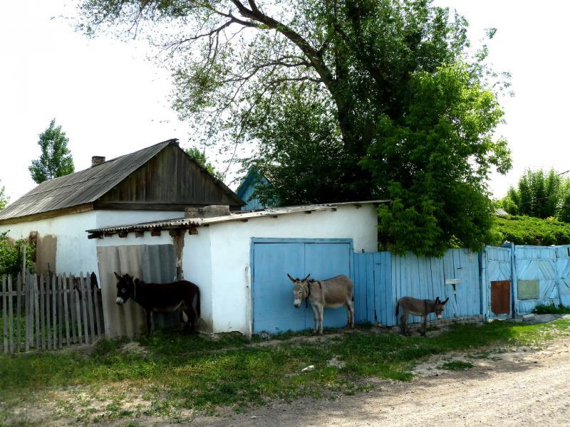 20130511. В селе Бирлик (Брлик).