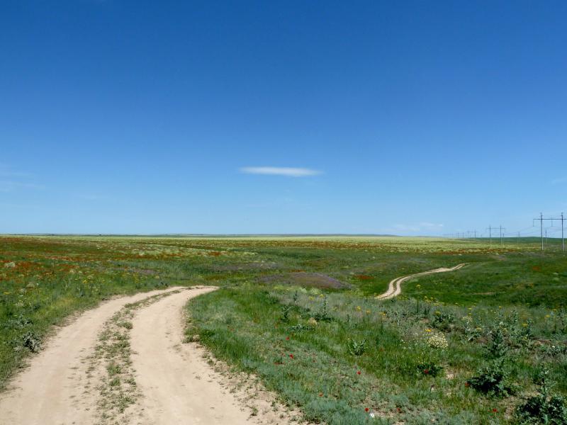 20130512. В долине между дорогой А-358 и Тасуткольским водохранилищем.
