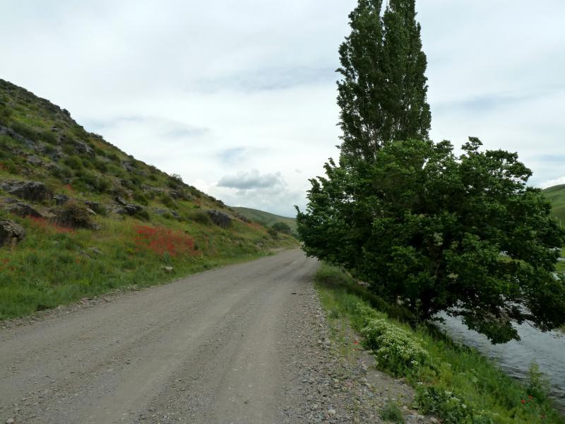 20130513. Дорога вдоль речки Ргайты.