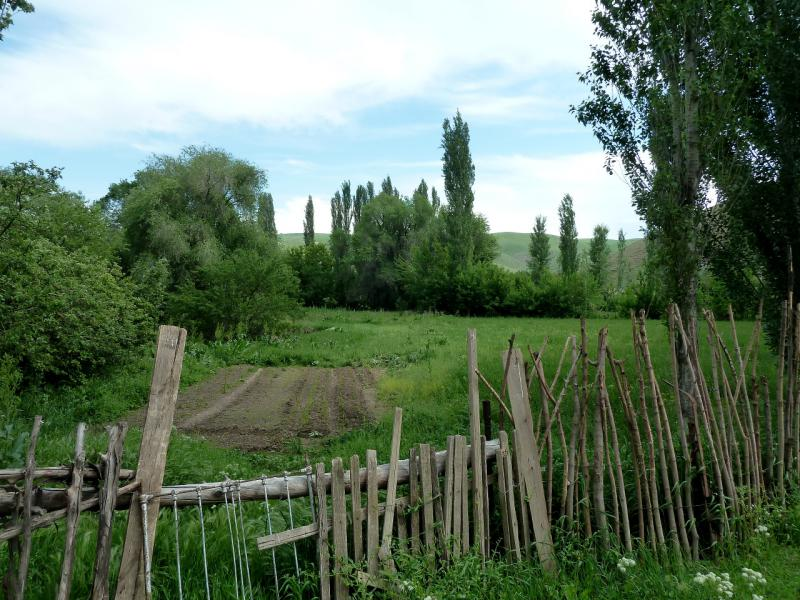 20130513. Огороды села Щербакты.