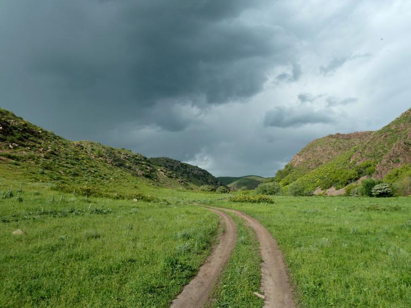 20130513. Дорога в долине речки Карасулы, неподалеку от села Щербакты.