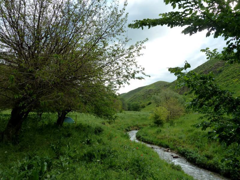 20130514. Вид места стоянки на берегу речки Карасулы.