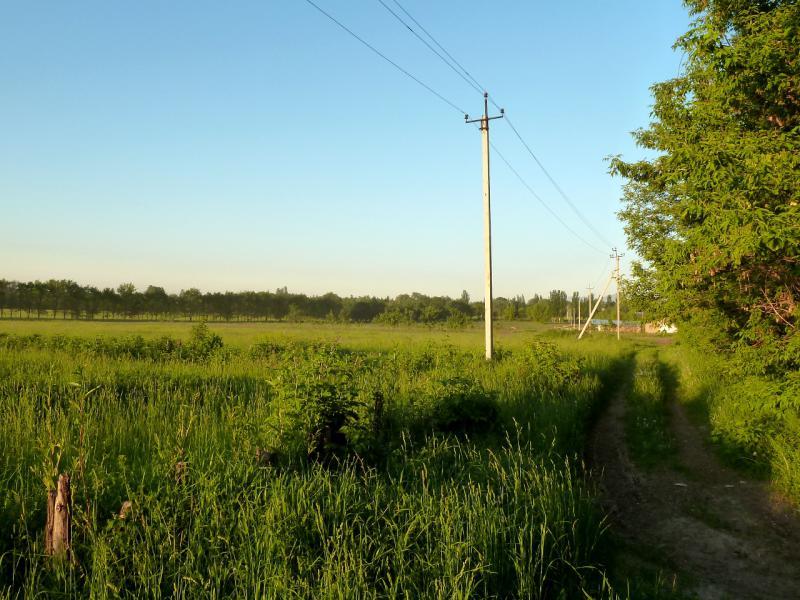 20130517. У дороги между посёлками Талгар и Есик.