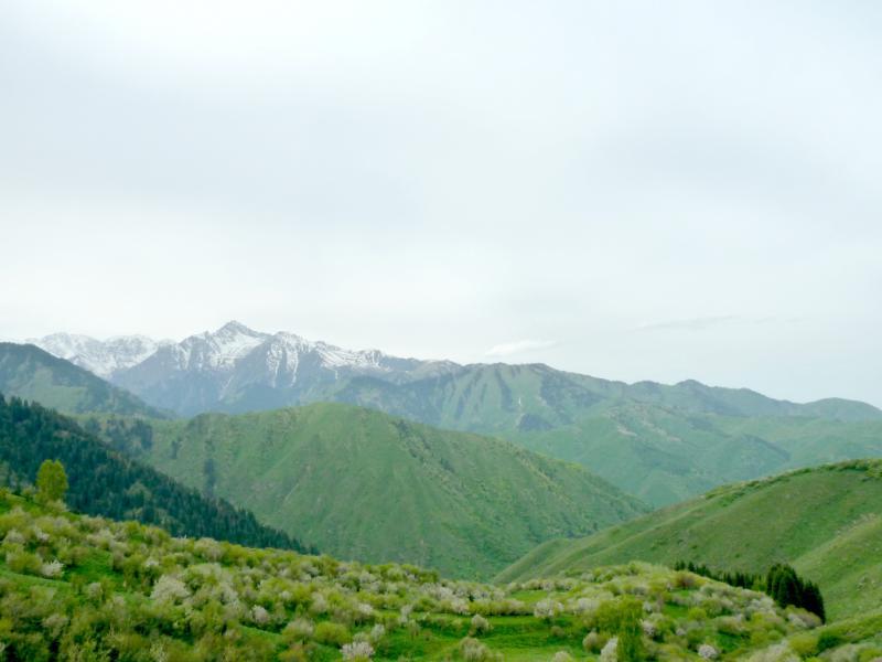 20130519. Вид с места стоянки в горах Заилийского Алатау.