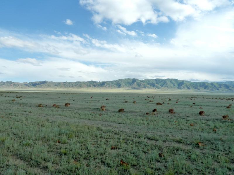 20130520. Вид на горы Торайгыр с дороги A-351, на Согетинской равнине.