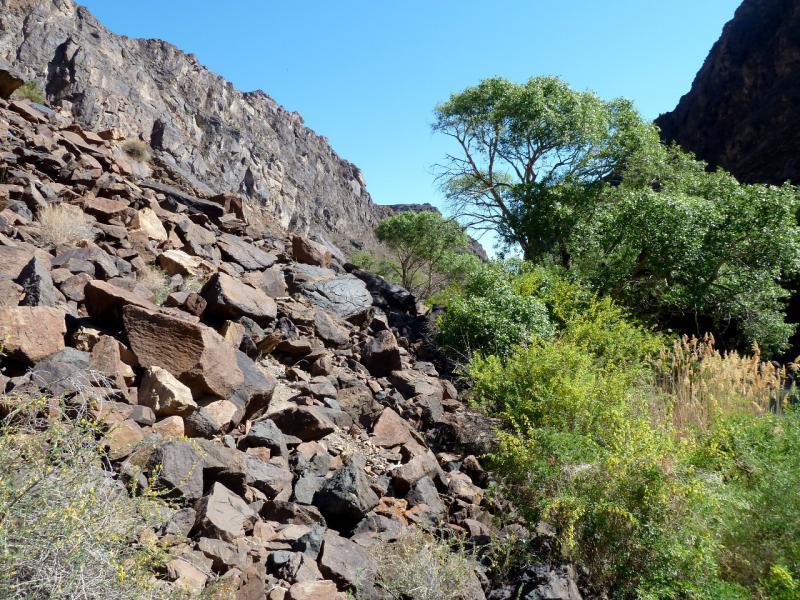 20130522. На склонах берегов реки Чарын в урочище Куртогай.