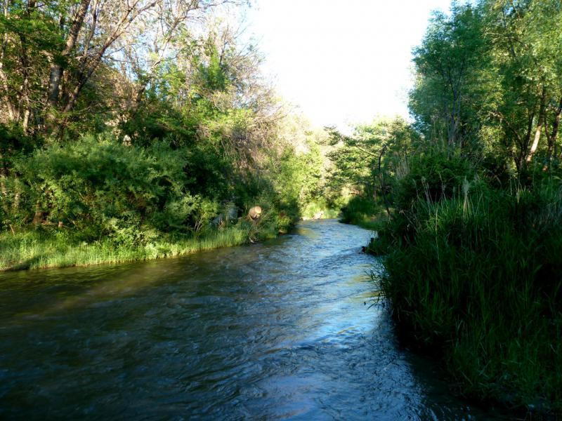 20130522. Речка Темирлик, за пару километров до места слияния с рекой Чарын.