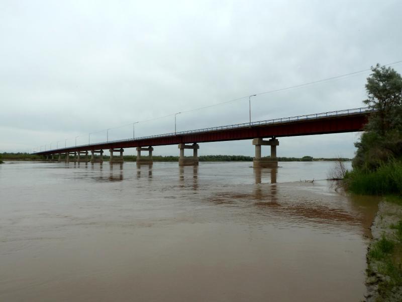 20130524. Вид с берега на мост через реку Или.