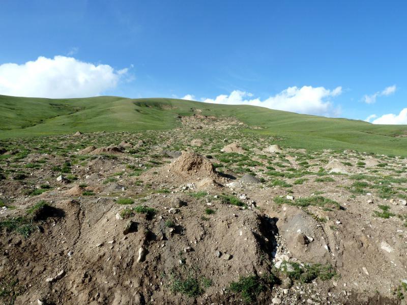 20130526. Оползень на склоне холма, в долине реки.