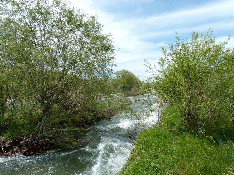 20130527. Очередной зажим русла реки, с заросшим кустами проходом.