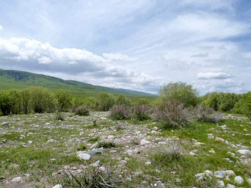 20130527. Каменные россыпи в долине реки Кескентерек.