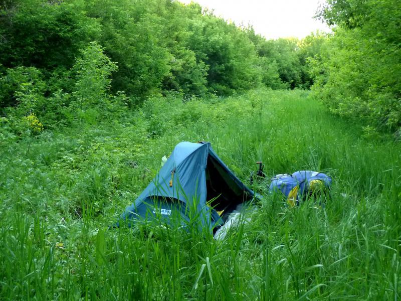 20130527. Вид на место ночной стоянки в роще у ручья Байтор.