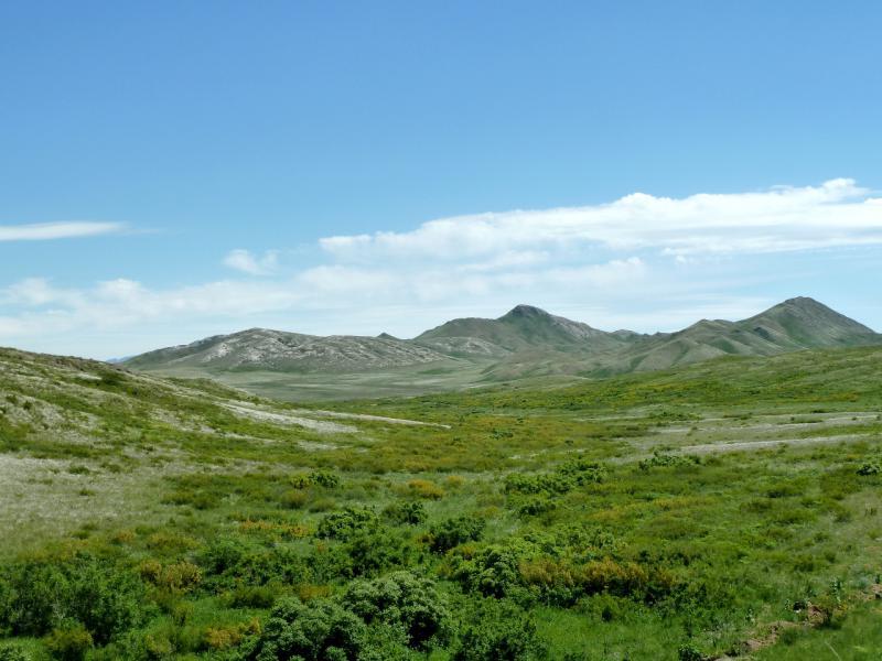 20130531. Придорожные виды Каражальских гор.
