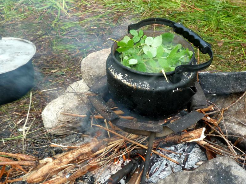20130603. Бухтарминский чай, из всей душистой травы, найденной под ногами.