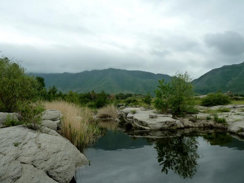 20130603. В устье речки на правом берегу водохранилища.