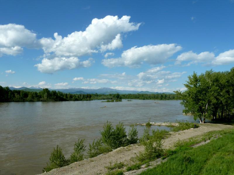 20130605. Вид на реку Бухтарма в районе моста.