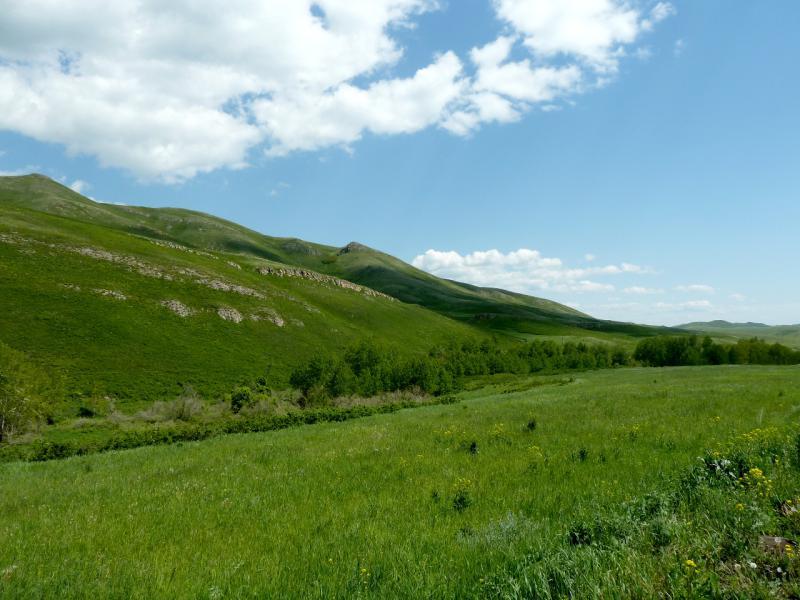 20130606. Долина речки Урунхайка.