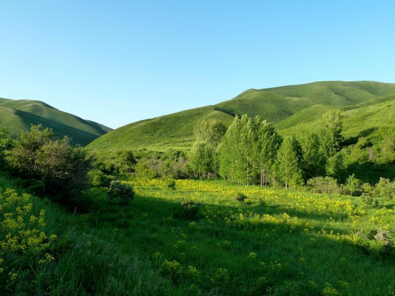 20130606. Долина речки Серебрянка.