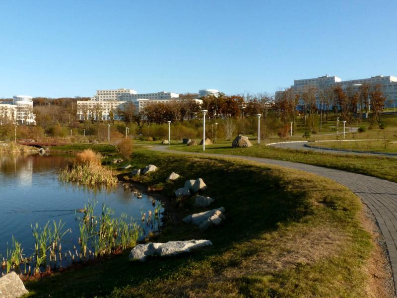 20191017. Владивосток. В парке Дальневосточного федерального университета (ДФУ).