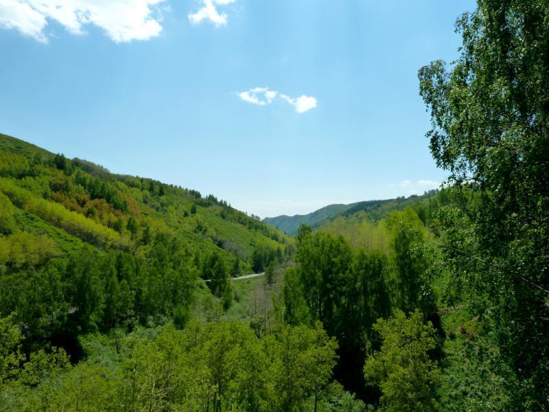 20130607. На середине перевала Осиновский.