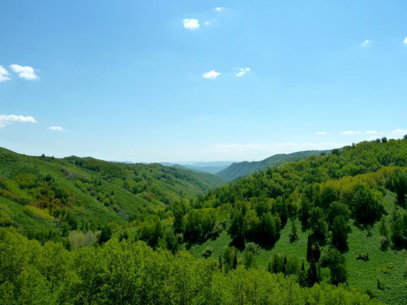 20130607. Вид на юг с перевала Осиновский.