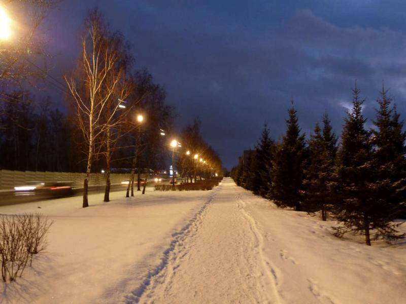 20200222. Красноярск. Пешеходная дорога на Сопку, вдоль улицы Свободный проспект.
