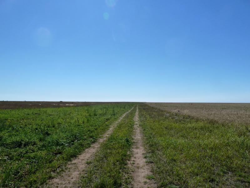20130907. Полевая дорога в районе села Евгеньевка.